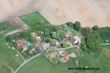 Butterholz