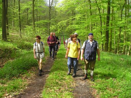 Wandern im Knüllgebirge