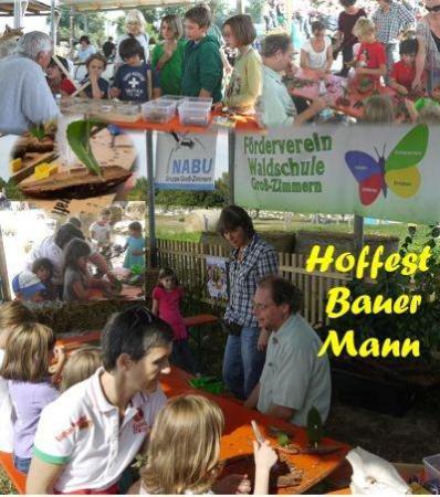 Hoffest Mann 2012
