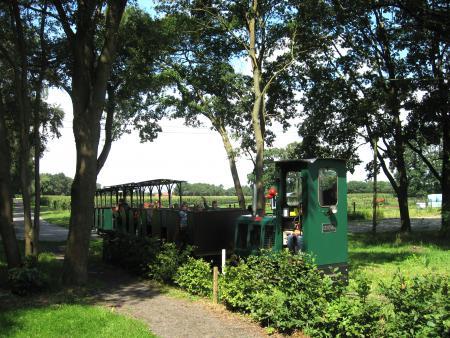 Moorbahn-Fahrt ins Moor