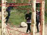 Klettergerüst Aus Polen : Gymnasium johanneum lüneburg das klettergerüst in aktion