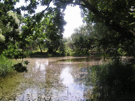 Dorfteich in Lenschow