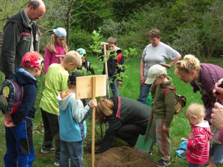 Kinder pflanzen einen Baum
