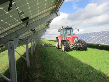 Pflege- Mulchen im Solarpark Finsterwalde III