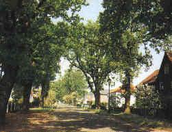 Eichenallee