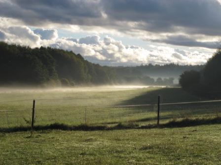 Ein Spaziergang am Morgen