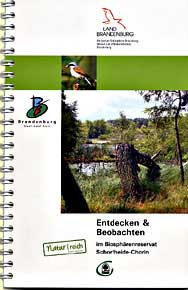 endecken_beob_gr.jpg