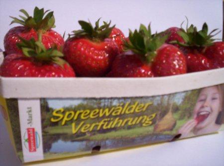 Erdbeer 3.jpg