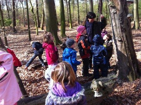die Kinder erkunden den Wald
