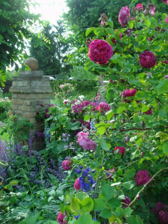 Hausgarten von Jana und Silvio Fey, Ludwigsfelde