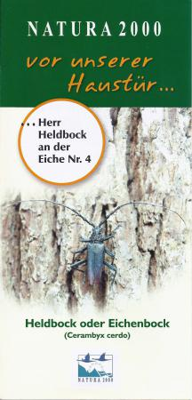 Flyer Heldbock