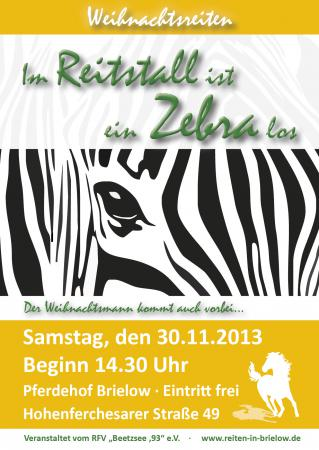 WR 2013 Plakat