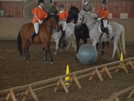 20 Pferdefußball