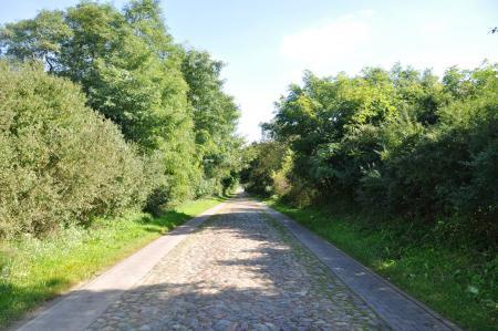 Feldsteinstraße nach Liebenhof