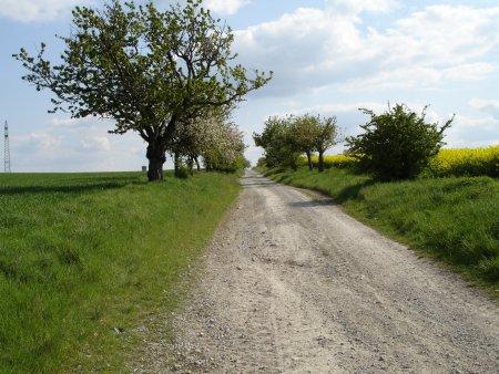 Gemeindeblick1.jpg