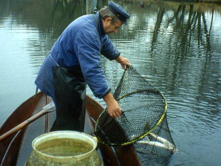 gewaesser-reusenfischer-Tautenhahn