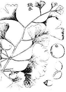Bild 1