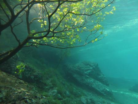 Grüner See.jpg
