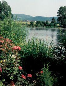 Herrenhof - Bild 1