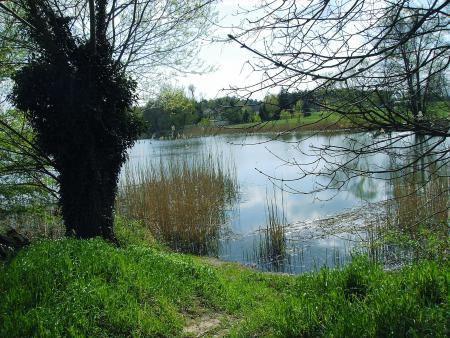Idylle am Klietzer See