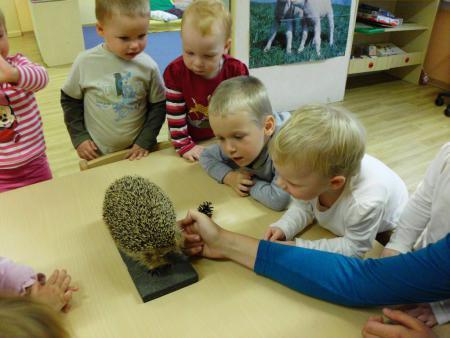 Besuch vom Igel bei den Kleinen in unserer Igelwoche