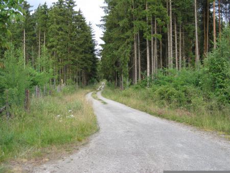 Stedtlinger Rundwanderweg (5)
