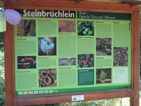 Fauna und Flora im Reichswald