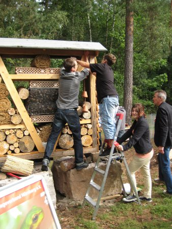 Bau des Insektenhotel durch Schüler
