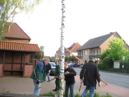 Aufstellung Pfingstbaum 2