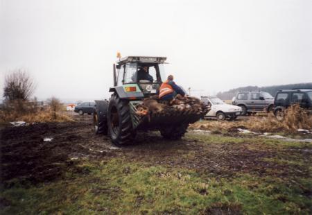 Sauenbergung im Naturschutzgebiet am 13.1.2002