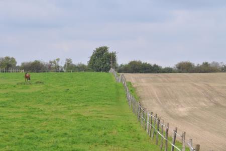 Eiszeitlich geprägte Landschaft bei Klosterdorf