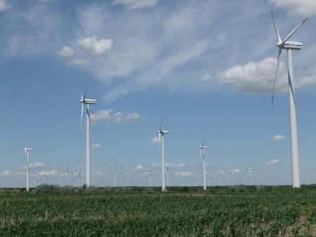 Kopie von Windpark Klettwitz.JPG