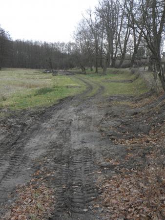 Der Letzte Abschnitt zum Schenk von Landsberg ist erkennbar