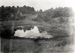 Schafwaschepfuhl 1926