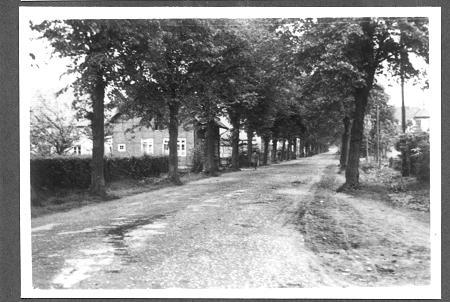 Mindener Straße