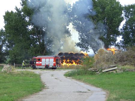 Feuer östlich des früheren LPG-Geländes, 10.8.2010