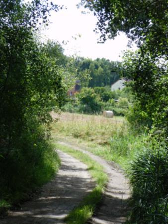 Weg aus dem Gartsbruch zur Ziegelei