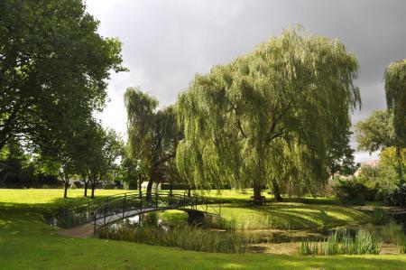 Park in Neutrebbin