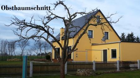 Obstbaumschnitt Bautzen