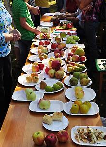 Anhaltischer Obsttag 2011