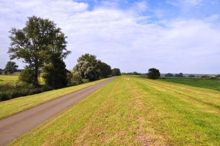 Der Radweg entlang der Oder