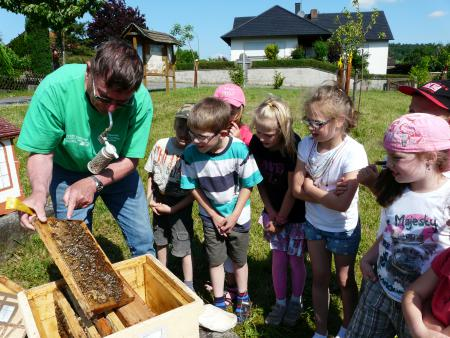 Bienenlehrstand 2013-5