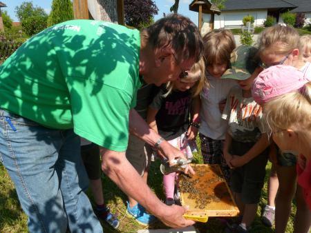 Bienenlehrstand 2013-6