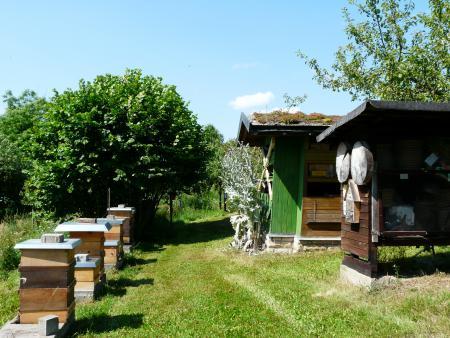 Bienenlehrstand 1