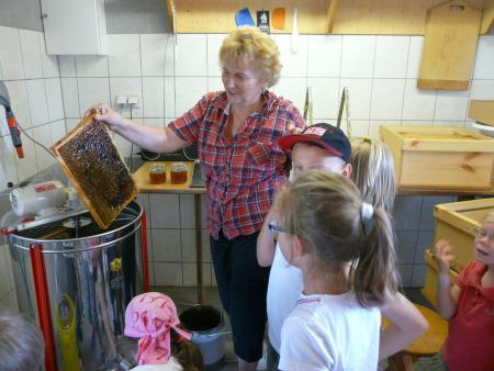 Bienenlehrstand 2013-15