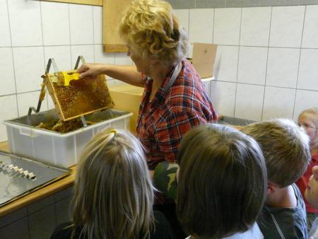 Bienenlehrstand 2013-16