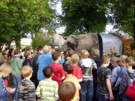 Elefant2010_5