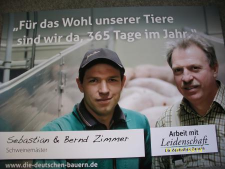 Plakat Schweine.JPG