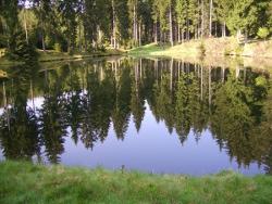 Reichenbacher Teich
