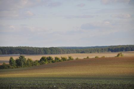 Eiszeitlich geprägte Landschaft bei Reichenberg